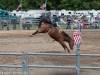 montgomery_nj_rodeo_2014-4