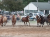 montgomery_nj_rodeo_2014-9